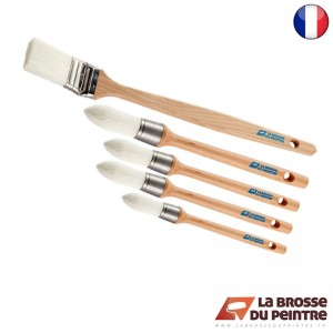 Pack de 5 brosses AQUAPREM S2F LBDP